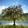Bled-Bohinj-day-trip-2