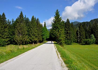 Kranjska-gora-bike-trip-1