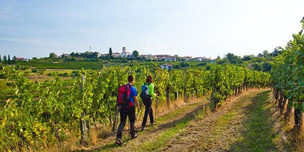 outdoor-slovenia-postojna
